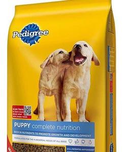 mejor comida para perros